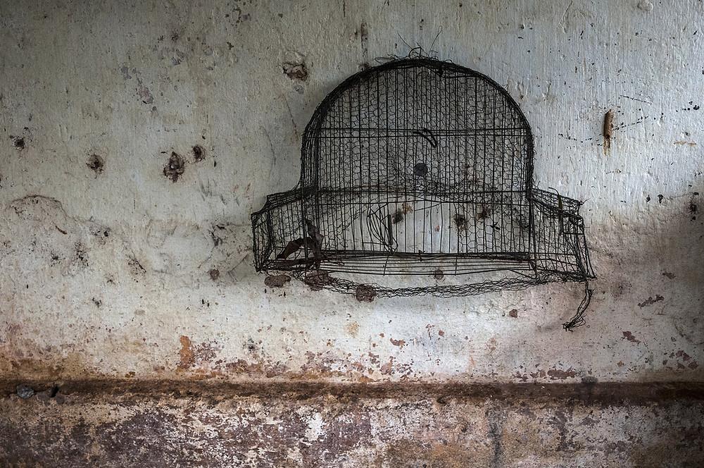 Broken, weather-worn bird cage on wall.