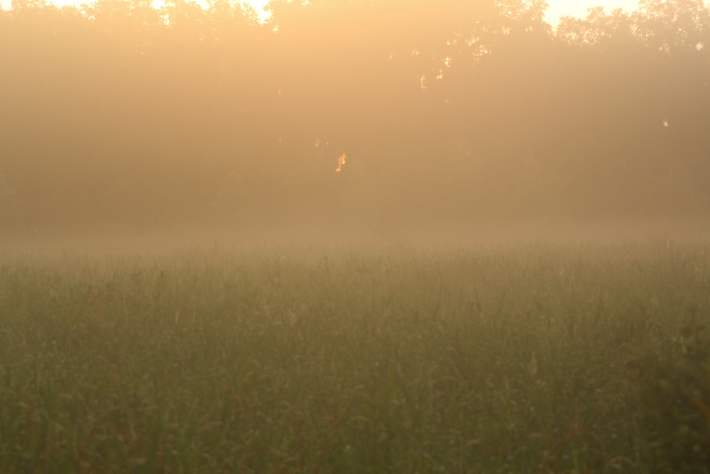 Photo of landscape at dawn
