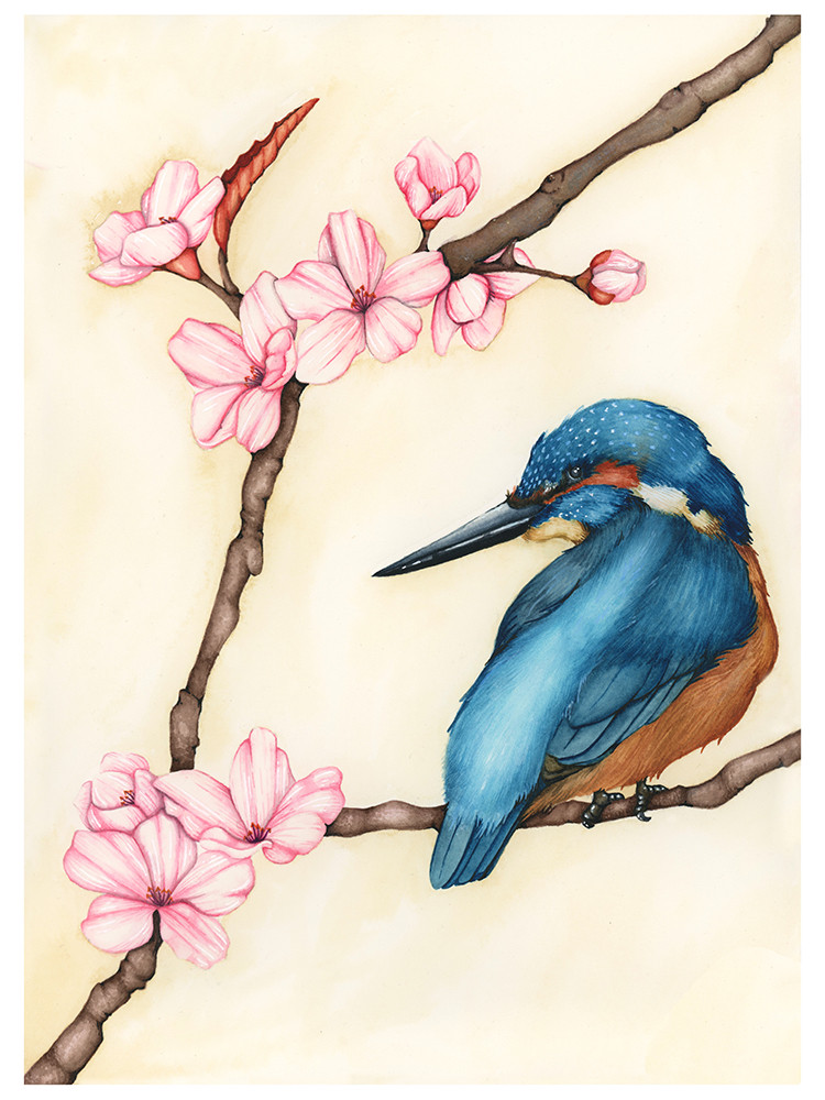Drawing of a blue bird and pink cherry blossom flowers