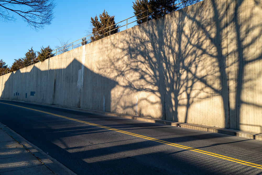 Shadows of a building and two trees seen along a wall across a road