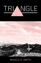 Triangle Cover.png