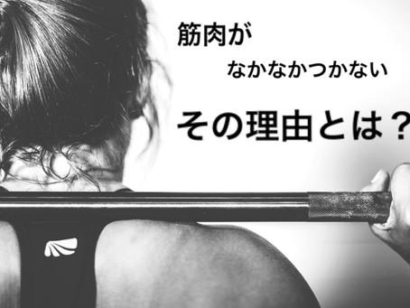 【筋トレ初心者】筋トレをしてるのに筋肉がつかない理由3選!