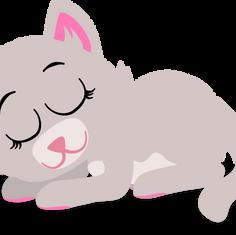 Miss Meow Sleeps