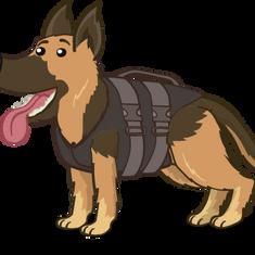 A Police Dog