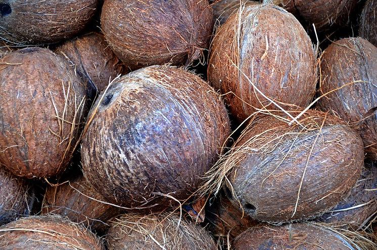 coconut-1583223_1920.jpg