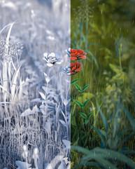 C4D weekly render nature