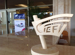 Congreso CIEFT 2012 (55)