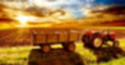 agropecuario saborea CDMX.jpg