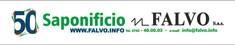 LOGO FALVO 2018 50 ANNI.jpg