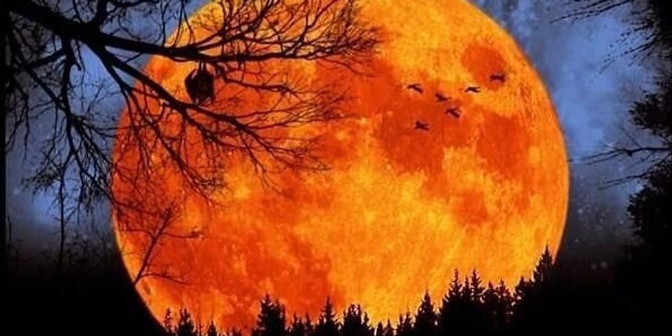 Harvest Full Moon Yagya for Abundance