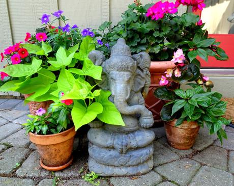 Ganesh Blessings!