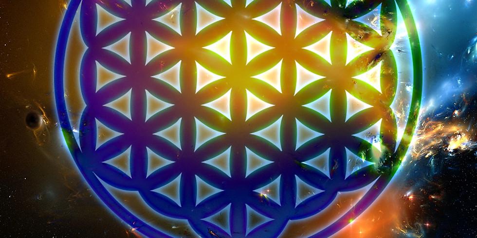 Free Meditation and Vibratronic Integration