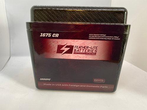 FL-1690PC (16v 90AH FLP protected in Carbon)