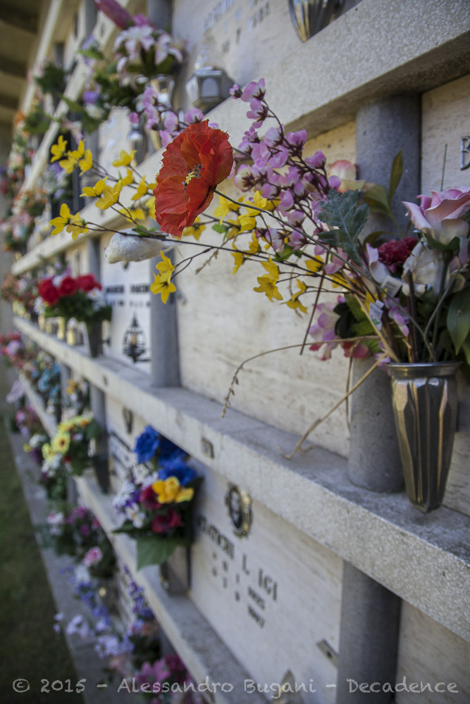 cimitero sperduto-4