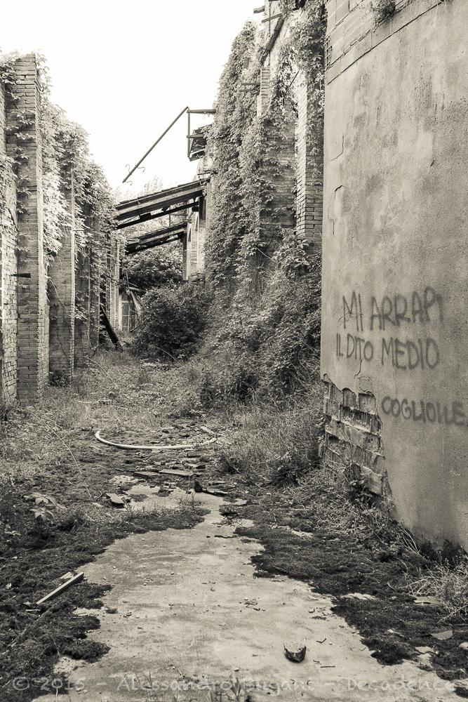 Fornace di Campotto-5