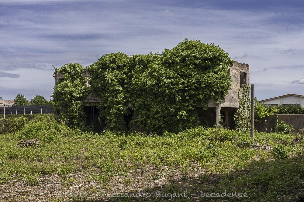 Ex Manicomio di Aguscello-89