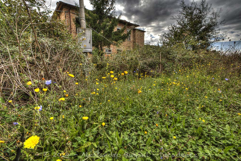 Casa abbandonata-5