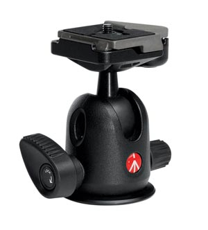 Testa Manfrotto 496RC2