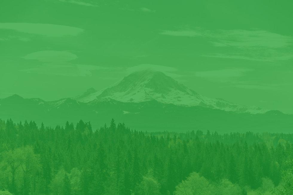 Mount Ranier, WA
