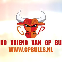 GP Bulls E-hockey
