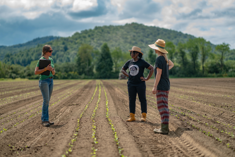 FARM BRANDING STRATEGY CALL