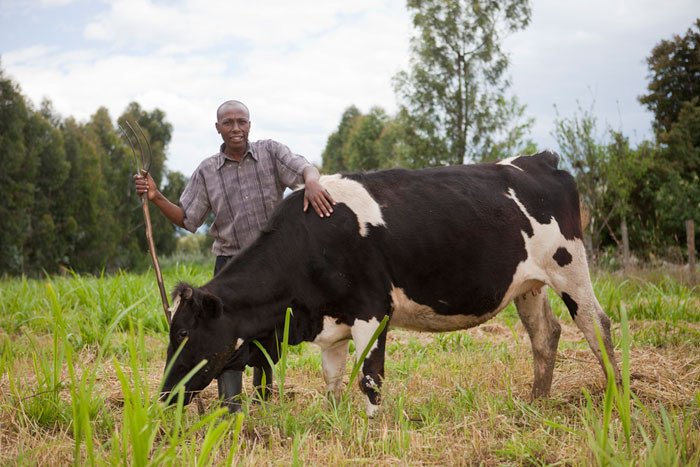 A Kenyan farmer who is part of a dairy cooperative, from the Gates Foundation on Flickr.