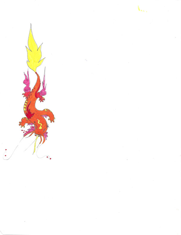 lava salamander-1.jpg