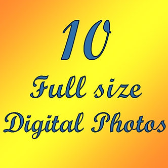 10 Day deal. 10 Full Size Digital Images