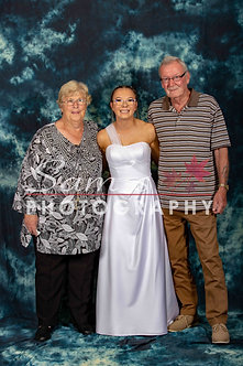 Family 33