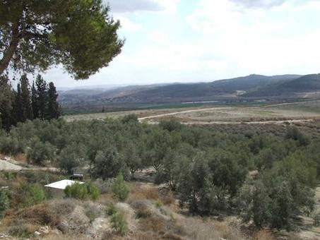 Sorek Valley