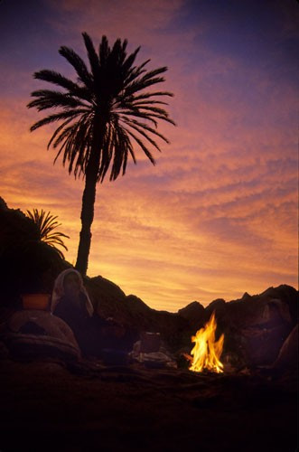 Sinai Campfire