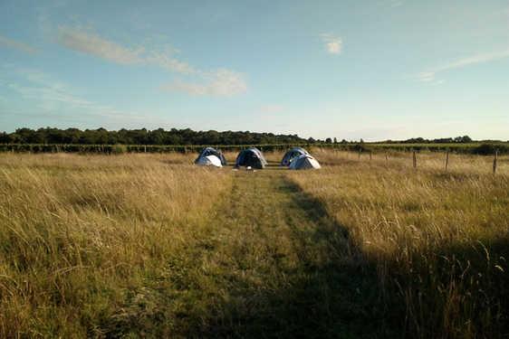 Camping au milieu des champs