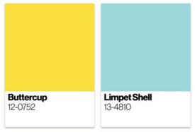 Re-Imagining Color Palettes