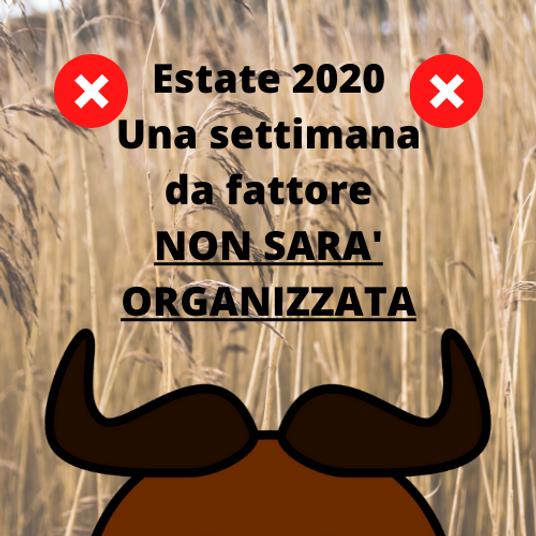CE  2020 no fattore.png