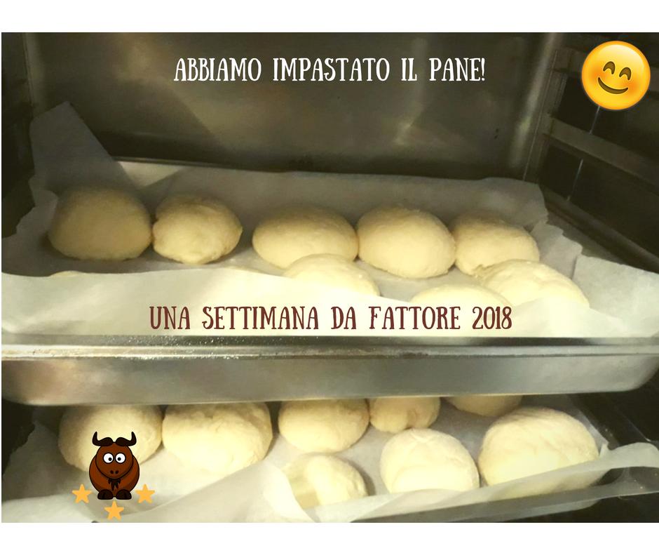 Prepariamo il pane