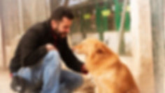 Matucan Servicios Caninos Madrid