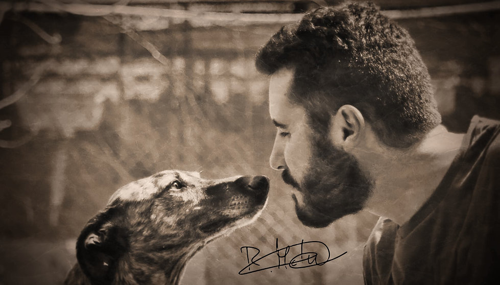Ricardo Galgo Bienvenido.jpg