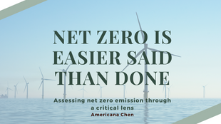 Why Net Zero Emission by 2050 is Not a Promising Commitment