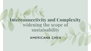 Interconnectivity and Complexity — widening the scope of sustainability