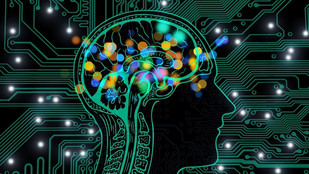 Unleashing the Potential of AI in a Circular Economy: Business Potential