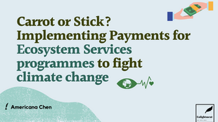 Carrot or Stick? Implementing Payments for Ecosystem Services Programmes to Fight Climate Change
