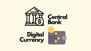 Who's leading the next breakthrough? The current landscape of Central Bank Digital Currencies