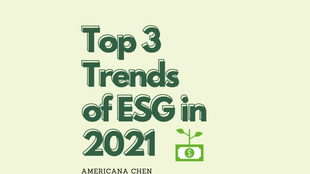 Top 3 Trends of ESG in 2021: Fostering Sustainable Investments