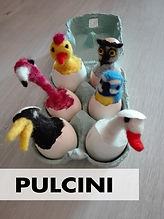 Pulcini.jpg