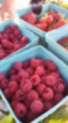Raspberries Strawberries 2017.jpg