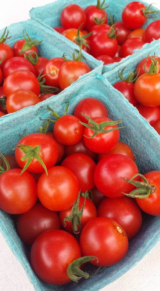 Cherry tomatos 2017.jpg