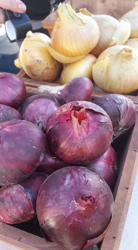 Red and Yellow onions 2017.jpg
