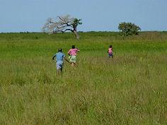 bonheur d'enfants en Casamance