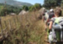 Randonnée dans la réserve de Dindéfello