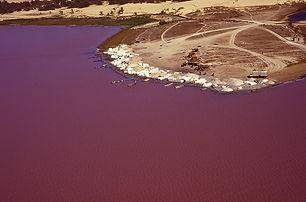 le lac rose au Sénégal.jpg